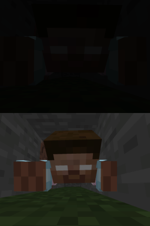 Taken, Tumblr, and Vision: birch-forest: trans-bedrock:  this is THE MOST intimidating screenshot i've ever taken (plus a version with night vision so you can actually see)  The last thing a transphobe sees before dying