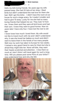 "Friends, Hello, and Love: Bird memes  pm  Hello my birb loving friends. Six years ago my wife  passed away. She had 20 tiels at her shop. I liked  birds but didn't understand the real love for them she  had. Well I got the birbs . I didn't have the room at our  house for such a large aviary. So I made it smaller and  had to give 10 away. Lucky for me she had so many  loving friends that helped me out. They took 12 from  me. I knew them and they were all bird lovers and had  their own. I knew they went to good homes. Now six  years later I have only four. I have lost the rest to old  age.  I never knew how much I loved them. My wife would  not like to travel much with me and I didn't understand  why. It was she loved her babies so much and didn't  want to leave them in the hands of too many people.  Well now my work has taken to Europe for two weeks.  I trained a very good friend to care for them but she is  afraid they might bite her. None will bite, they want  their heads scratched and attention. I miss them so  much at I don't think I will travel again for such a long  time. Will you please post some Picts of your birbs?I  now understand how and why she felt. <p>Man takes care of birds via /r/wholesomememes <a href=""http://ift.tt/2xArDpu"">http://ift.tt/2xArDpu</a></p>"