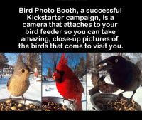 feederism: Bird Photo Booth, a successful  Kickstarter campaign, is a  camera that attaches to your  bird feeder so you can take  amazing, close-up pictures of  the birds that come to visit you