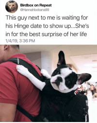 9gag, Dating, and Life: Birdbox on Repeat  @Hannahbobana99  This guy next to me is waiting for  his Hinge date to show up...She's  in for the best surprise of her life  1/4/19, 3:36 PM Doggo is on his way to steal your girl. @hinge Get @hinge the dating app now, link in bio.⠀ -⠀ 9gag Hinge 9gagHinge