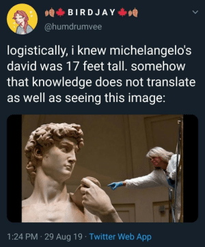 Michaelangelo, Target, and Titties: BIRDJAY  @humdrumvee  logistically, i knew michelangelo's  david was 17 feet tall. somehow  that knowledge does not translate  as well as seeing this image:  1:24 PM 29 Aug 19. Twitter Web App chaotic-carnifex:  tincansamurai:  probsjosh:  randomklutz:   themusecalliope:   ultimate-cringelord:   another pic, different angle   ^ important    big boy  michaelangelo could put all that work into perspective tricks and he still couldn't sculpt a titty   He was just not into titties.