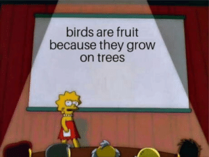 laughoutloud-club:  Finally someone said it.: birds are fruit  because they grow  on treesS laughoutloud-club:  Finally someone said it.