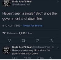 "Iphone, Twitter, and Birds: BIRDS Birds Aren't Real  ARENT  REAL @birdsarentreal  Haven't seen a single ""Bird"" since the  government shut downhm  9:10 AM 1/8/19 Twitter for iPhone  771 Retweets 2,236 Likes  Birds Aren't Real @birdsarentreal 1d  BIRDS  AREN'T Have you seen any birds since the  REAL  government shut down  13  t1251 V295 meirl"