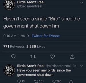 """Dank, Iphone, and Memes: BIRDS Birds Aren't Real  ARENT  REAL @birdsarentreal  Haven't seen a single """"Bird"""" since the  government shut downhm  9:10 AM 1/8/19 Twitter for iPhone  771 Retweets 2,236 Likes  Birds Aren't Real @birdsarentreal 1d  BIRDS  AREN'T Have you seen any birds since the  REAL  government shut down  13  t1251 V295 meirl by ftse MORE MEMES"""