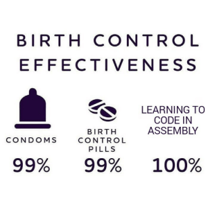 x86 Birth control: BIRTH CONTROL  EFFECTIVENESS  LEARNING TO  CODE IN  ASSEMBLY  BIRTH  CONDOMS  CONTROL  PILLS  100%  99%  99% x86 Birth control