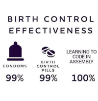 Anaconda, Control, and Birth Control: BIRTH CONTROL  EFFECTIVENESS  LEARNING TO  CODE IN  ASSEMBLY  BIRTH  CONTROL  PILLS  CONDOMS  99%  99%  100% 100 % Safe programs