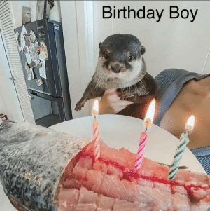 Birthday Boy: Birthday Boy