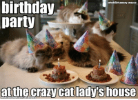 Birthday, Memes, and My House: birthday  cataddictsanony-mouse  party  irth  at the crazy cat adys house Aka my house  Original www.flickr.com/photos/8172584@N08/2193585182/sizes/z/in/pool-599145@N22/