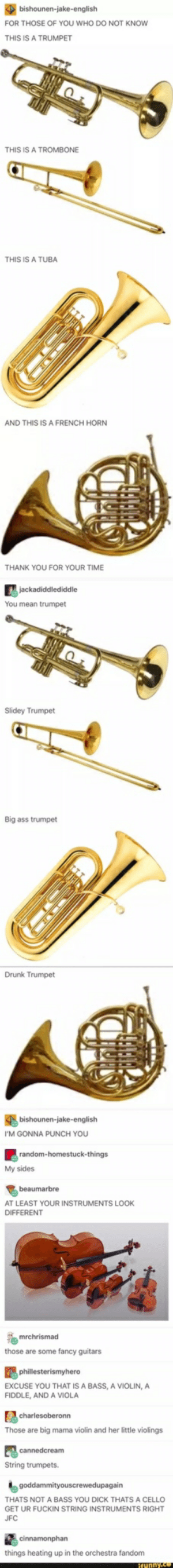 Ass, Drunk, and Thank You: bishounen-jake-english  FOR THOSE OF YOU WHO DO NOT KNOW  THIS IS A TRUMPET  THIS IS A TROMBONE  THIS IS A TUBA  AND THIS IS A FRENCH HORN  THANK YOU FOR YOUR TIME  jackadiddlediddle  Slidey Trumpet  Big ass trumpet  Drunk Trumpet  bishounen-jake-english  I'M GONNA PUNCH YOU  random-homestuck-things  My sides  beaumarbre  AT LEAST YOUR INSTRUMENTS LOOK  DIFFERENT  mrchrismad  those are some fancy guitars  phillesterismyhero  EXCUSE YOU THAT IS A BASS, A VIOLIN, A  FIDDLE, AND A VIOLA  charlesoberonn  Those are big mama violin and her little violings  cannedcream  String trumpets.  goddammityouscrewedupagain  THATS NOT A BASS YOU DICK THATS A CELLO  GET UR FUCKIN STRING INSTRUMENTS RIGHT  JFC  cinnamonphan  things heating up in the orchestra fandom