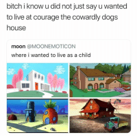 Bitch, Dogs, and Funny: bitch i know u did not just say u wanted  to live at courage the cowardly dogs  house  moon @MOONEMOTICON  where i wanted to live as a child
