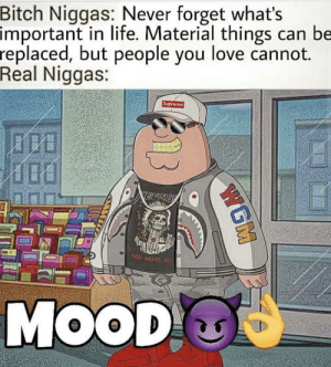 Bitch, Life, and Love: Bitch Niggas: Never forget what's  important in life. Material things can be  replaced, but people you love cannot.  Real Niggas:  Supreme  VERZUS  OD WANTSY  MOOD  WGM Mood 😈