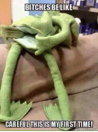 BITCHES BE LIKE  CAREFUL THIS IS MY FIRST TIME!  MEMEELUL COM Kermit is such a slut