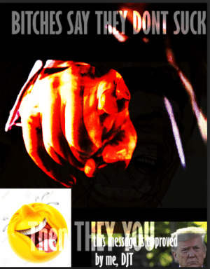 Funny, Lol, and Reddit: BITCHES SAY THEY DONT SUCK  THEnd  VAH  by me, DIT haha lol funny like and share if true is this 2010