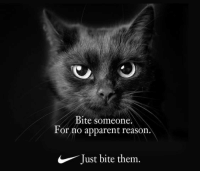 Reason, Them, and Bite: Bite someone.  For no apparent reason.  Just bite them.