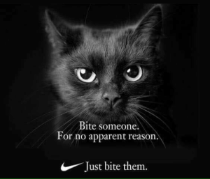 Funny, Reason, and Via: Bite someone.  For no apparent reason.  Just bite them. Hey! via /r/funny https://ift.tt/2x91NcQ