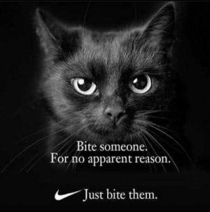 Just Do It..: Bite someone.  For no apparent reason.  Just bite them. Just Do It..