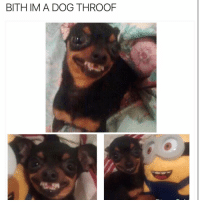 Funny, Lisp, and  Barking: BITHIM A DOG THROOF How you bark with a lisp 😂