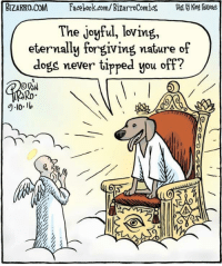 "Dogs, Facebook, and facebook.com: BIZARRO.COM  Facebook.com/ BizarroComics  Dist King atues  The joyful, loving,  eternally forgiving nature of  dogs never tipped you off?  Ro  9-101 <p>One can only hope via /r/wholesomememes <a href=""http://ift.tt/2revd5W"">http://ift.tt/2revd5W</a></p>"