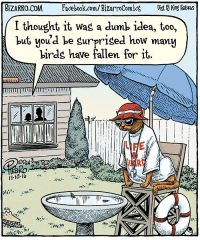 Dumb, Facebook, and Life: BIZARRO COM Facebook.com/BizarroComics Kng Patues  I thought it was a dumb idea, too,  but, you'd be surprised how many  birds have fallen for it,  LIFE I didn't think about this when I wrote and drew this cartoon, but seeing it today I realize it describes how I feel about our political situation. Your experience may vary.