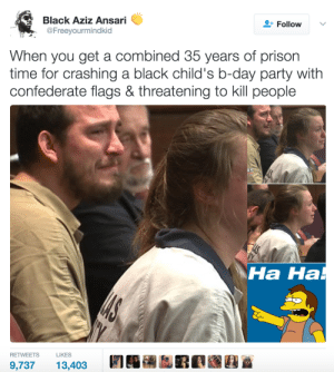 Karma is a good bitch by Rainbowcoa MORE MEMES: Black Aziz Ansari  @Freeyourmindkid  Follow  When you get a combined 35 years of prison  time for crashing a black child's b-day party with  confederate flags & threatening to kill people  Ha Ha  на на  RETWEETSLIKES  9,73713,403 Karma is a good bitch by Rainbowcoa MORE MEMES