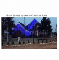 so. many. lights. follow me @hoebomb for more videos 😂: Black Beatles synced to Christmas lights so. many. lights. follow me @hoebomb for more videos 😂