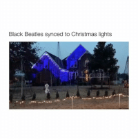 Who has the time for this oh my god 😂 - follow @bitchy.tweets if you're watching 🎁🎄: Black Beatles synced to Christmas lights Who has the time for this oh my god 😂 - follow @bitchy.tweets if you're watching 🎁🎄