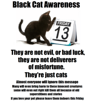 catsbeaversandducks: This is VERY serious. Please keep you black cats inside this Friday the 13th! Via trustmeimafraggle : Black Cat Awareness  FRIDAY  13  They are not evil, or bad luck,  they are not deliverers  of misfortune.  They're just cats  Almost everyone will ignore this message  Many will even bring harm to these innocent creatures  some will even out right kill them all because of old  superstitions and stories  If you love your pet please leave them indoors this Friday catsbeaversandducks: This is VERY serious. Please keep you black cats inside this Friday the 13th! Via trustmeimafraggle