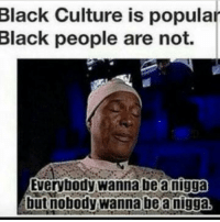 Facts: Black Culture is popular  Black people are not.  be a nigga  Everybody wanna but nobody wanna be anigga, Facts