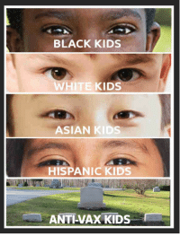 Asian, Tumblr, and Black: BLACK KIDS  WHITE KIDS  ASIAN KIDS  HISPANIC KIDS  ANTI-VAX KIDS browsedankmemes:  We Are All The Same, No Matter How We Present Ourselves