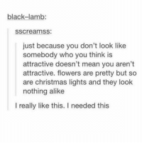 Christmas, Memes, and Black: black-lamb:  sscreamss:  just because you don't look like  somebody who you think is  attractive doesn't mean you aren't  attractive. flowers are pretty but so  are christmas lights and they look  nothing alike  I really like this. I needed this 🌷🌹🌸🌲🎄