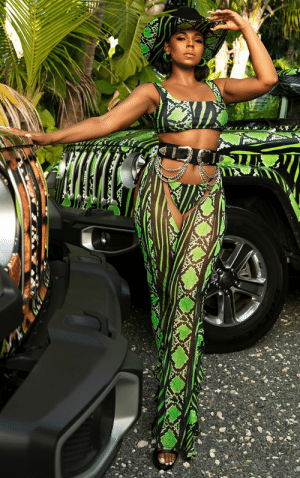 Ashanti, Black, and Water: Black Musician got dressed like a Water Mellon (Ashanti Singer)
