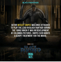 Your thoughts about a fact? What do you think about new Black Panther poster? Trailer Tomorrow! Marvel Avengers Xmen IronMan CaptainAmerica InfinityWar Wolverine Netflix Daredevil ThePunisher Deadpool BlackPanther Spiderman Legion FantasticFour StarWars TheDefenders AgentsOfShield Thor Loki GuardiansOfTheGalaxy StarLord Groot DoctorStrange LukeCage IronFist GhostRider Logan TheInhumans Funko: BLACK PANTHER  ACTOR WESLEY SNIPES  WAS ONCE ATTACHED  TO PLAY THE LEAD IN BLACK PANTHER DURING  THE 199OS WHEN IT WAS IN DEVELOPMENT  AT COLUMBIA PICTURES. SNIPES EVEN WROTE  A SCRIPT TREATMENT FOR THE MOVIE.  MARVESTUDOS  BLACK  CINEMA  FACTS Your thoughts about a fact? What do you think about new Black Panther poster? Trailer Tomorrow! Marvel Avengers Xmen IronMan CaptainAmerica InfinityWar Wolverine Netflix Daredevil ThePunisher Deadpool BlackPanther Spiderman Legion FantasticFour StarWars TheDefenders AgentsOfShield Thor Loki GuardiansOfTheGalaxy StarLord Groot DoctorStrange LukeCage IronFist GhostRider Logan TheInhumans Funko