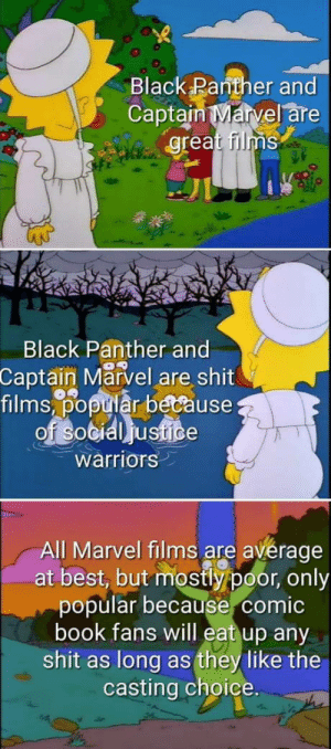 True. True. True.: Black Panther and  Captain Marvel are  great films  Black Panther and  Captain Marvel are shit  films,% tiår because  warriors  All Marvel films are avérage  at best, but mostly poor, only  popular because comic  book fans will eat up any  shit as long as they like the  casting choice. True. True. True.