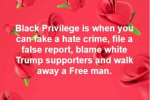Is THAT what it's called?: Black Privilege is when you  can fake a hate crime, file a  false report, blame white  Trump supporters and walk  away a Free man. Is THAT what it's called?