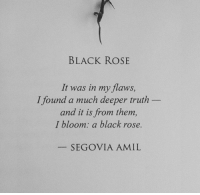 Black, Rose, and Truth: BLACK ROSE  It was in my flaws,  and it is from them  I found a much deeper truth  I bloom: a black rose.  SEGOVIA AMIL