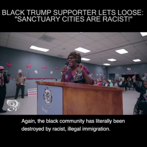 """Sanctuary Cities: BLACK TRUMP SUPPORTER LETS LOOSE:  """"SANCTUARY CITIES ARE RACIST!""""  OR  Again, the black community has literally been  destroyed by racist, illegal immigration."""