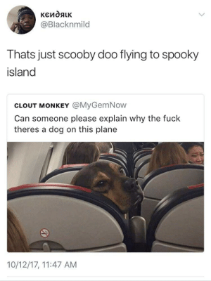 Ruh-roh: @Blacknmild  Thats just scooby doo flying to spooky  island  CLOUT MONKEY @MyGemNow  Can someone please explain why the fuck  theres a dog on this plane  10/12/17, 11:47 AM Ruh-roh