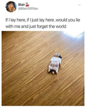 Dog-tired: Blair  @BlairGilfillan  If I lay here, if I just lay here..would you lie  with me and just forget the world Dog-tired