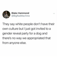 Funny, Party, and White People: Blake Hammond  @BigRadMachine  They say white people don't have their  own culture but Ijust got invited to a  gender reveal party for a dog and  there's no way we appropriated that  from anyone else This is absolute (@theworldpolice)