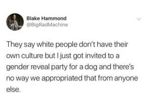 blake: Blake Hammond  @BigRadMachine  They say white people don't have their  own culture but I just got invited to a  gender reveal party for a dog and there's  no way we appropriated that from anyone  else.