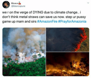 Amazon, Children, and Fire: blanco  @blancopure  we r on the verge of DYING due to climate change.. i  don't think metal straws can save us now. step ur pussy  game up mam and sirs The Amazon is on Fire, The Glaciers Are Melting — No Wonder Millennials Don't Want Children!