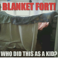Did you do this as a kid?: BLANKET FORT  WHO DID THIS AS A KID? Did you do this as a kid?