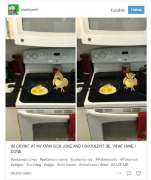 Egg: blawkywolf  tumblr  Follow  BlawkyWolf  IM CRYINF AT MY OWN SICK JOKE AND I SHOULDNT BE, WHAT HAVE  DONE  #pokemon jokes #pokemon meme #pokemon go #PokemonGo #Pokemon  #pidgey #cooking #eggs #sick humor #what have I done #SAVE ME  86,932 notes Egg