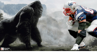 Bills coach Rex Ryan says the only thing that can cover Rob Gronkowski is King Kong...so who ya got? 🏈👀😂: bleacher  report Bills coach Rex Ryan says the only thing that can cover Rob Gronkowski is King Kong...so who ya got? 🏈👀😂