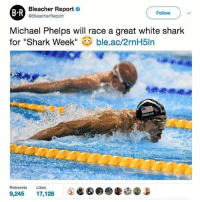 "The Mayweather v McGregor undercard is coming along nicely...: Bleacher Report  e  BR  Follow  @BleacherReport  Michael Phelps will race a great white shark  for ""Shark Week  ble.ac/2rnH5ln  Retweets  Likes  9,245  17.128 The Mayweather v McGregor undercard is coming along nicely..."
