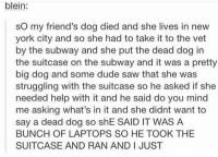 Dude, Friends, and Memes: blein:  sO my friend's dog died and she lives in new  york city and so she had to take it to the vet  by the subway and she put the dead dog in  the suitcase on the subway and it was a pretty  big dog and some dude saw that she was  struggling with the suitcase so he asked if she  needed help with it and he said do you mind  me asking what's in it and she didnt want to  say a dead dog so shE SAID IT WAS A  BUNCH OF LAPTOPS SO HE TOOK THE  SUITCASE AND RAN AND I JUST well he's in for a surprise https://t.co/tKulv0yCGL