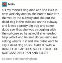 @funnytumblrstories: blein  so my friend's dog died and she lives in  new york city and so she had to take it to  the vet by the subway and she put the  dead dog in the suitcase on the subway  and it was a pretty big dog and some  dude saw that she was struggling with  the suitcase so he asked if she needed  help with it and he said do you mind me  asking what's in it and she didnt want to  say a dead dog so shE SAID IT WAS A  BUNCH OF LAPTOPS SO HE TOOK THE  SUITCASE AND RAN AND I JUST  Source: elderstunningham @funnytumblrstories