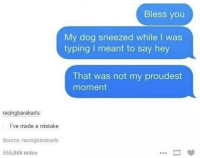 Dog, Source, and First: Bless you  My dog sneezed while I was  typing I meant to say hey  That was not my proudest  moment  racingbarakarts:  I've made a mistake  Source: racingbarakarts  555,868 notes Bork is first priority