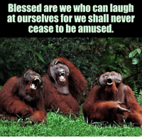 Episcopal Church , Laughing, and Laugh: Blessed are we Who can laugh  at ourselves for we shall never  cease to be amused. We're all about this!