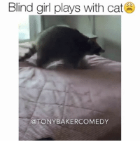 CoCo, Memes, and Girl: Blind girl plays with cat  @TONY BAKER COMEDY Tony Baker as CoCo the raccoon pretending to be a cat. TonyBakerVoiceovers